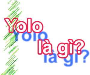 Từ YOLO có nghĩa là gì?