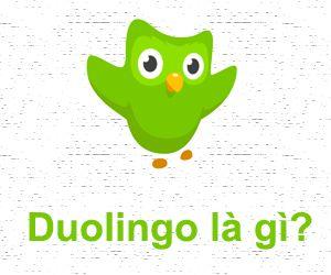 Trang web Duolingo.com là gì?