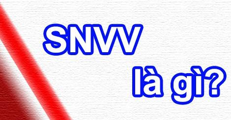 Snvv có nghĩa là gì?