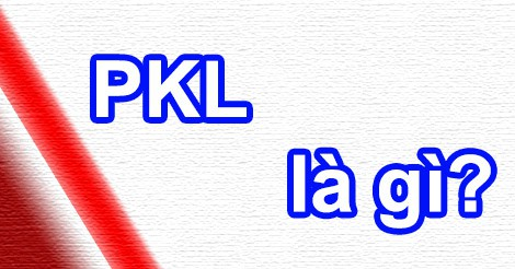 Xe PKL nghĩa là gì?