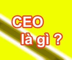 CEO có nghĩa là gì và CEO làm gì?