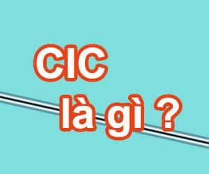 CIC là gì và CIC là tổ chức gì?