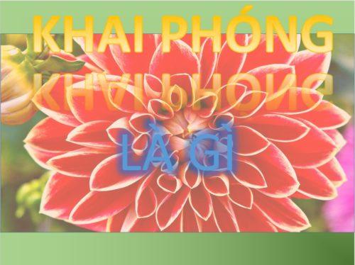 KHAI-PHONG-LA-GI