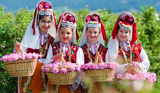 hoa-hong-bulgarie