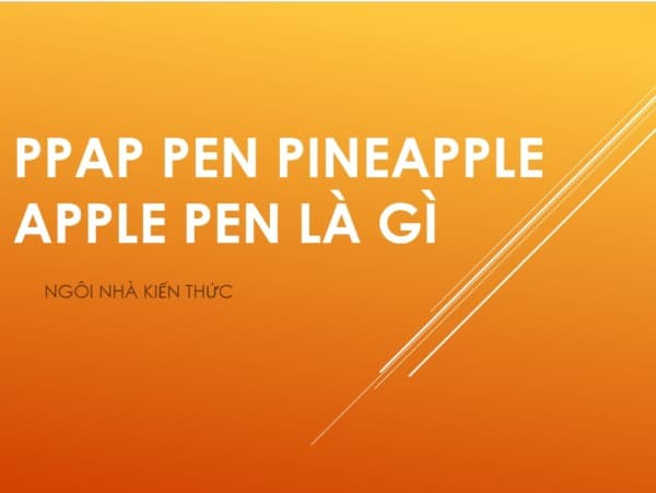 ppap-pineapple-pen-apple-pen-la-gi-ngoinhakienthuc