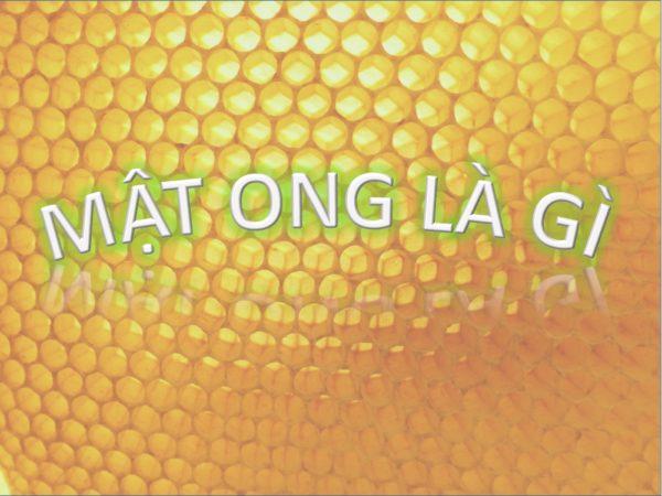 mat-ong-la-gi