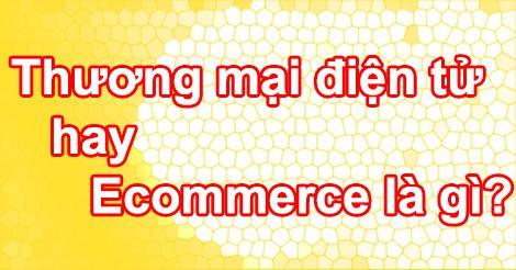 thuong-mai-dien-tu-hay-ecommerce-la-gi
