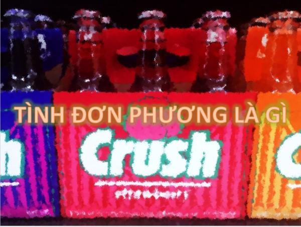 tinh-yeu-don-phuong-la-gi