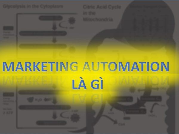 3 - Marketing automation hay automation marketing là gì và cách dùng cơ bản ra sao?