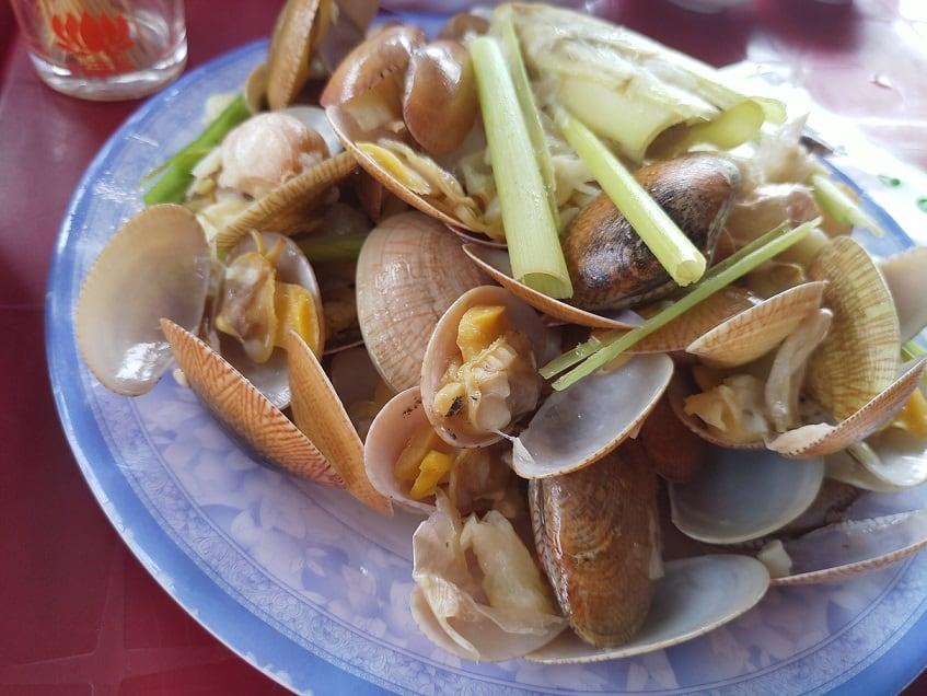 12 - Hành trình đi chơi Phú Yên cho người bận rộn