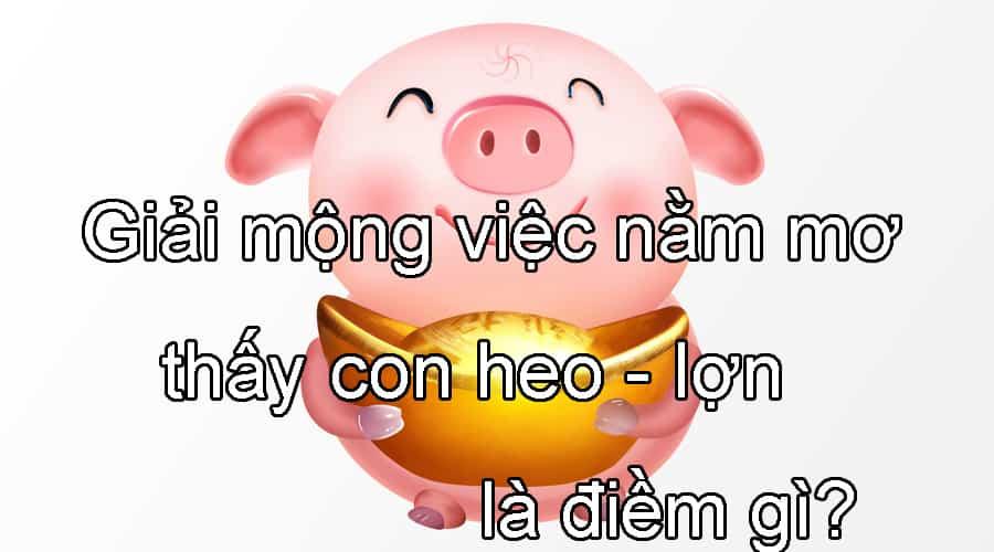 Giải mộng việc nằm mơ thấy con heo - lợn là điềm gì?